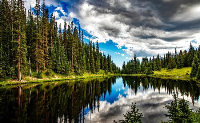 bosco lago montagna