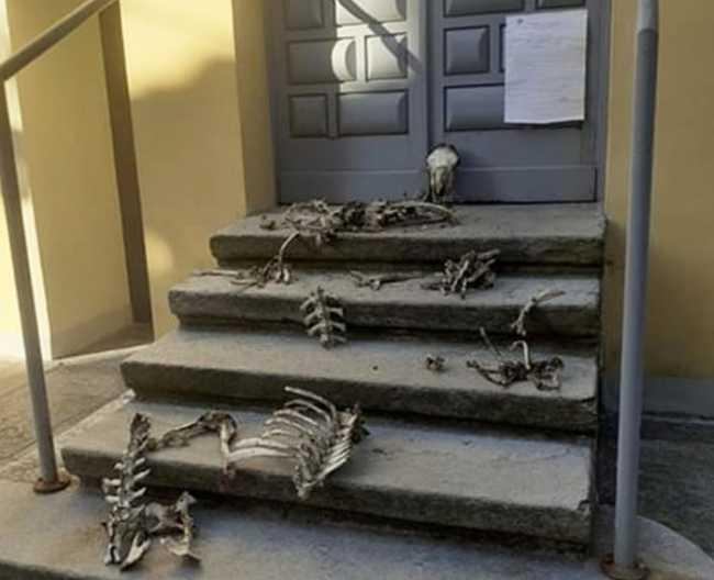 ossa scale comune craveggia