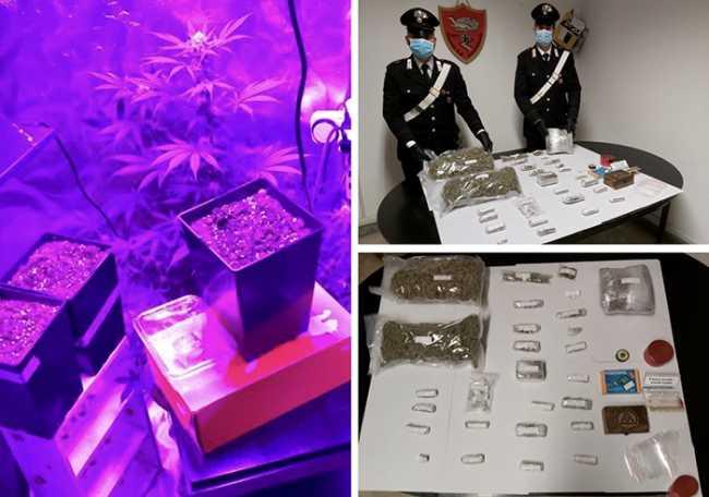 carabinieri piante marjuana crodo ott 20 mix